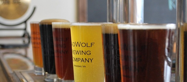 Badwolf Brewing Company for sale!