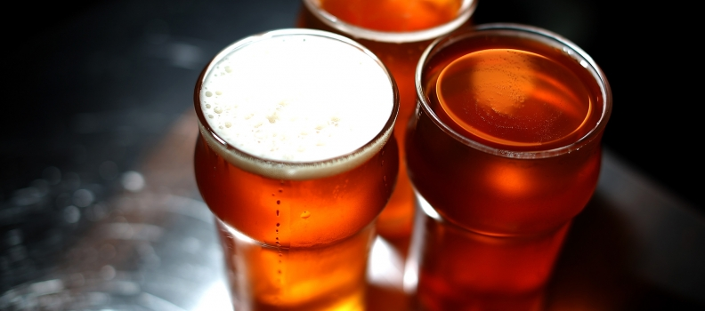 Regional Carolina Brewery with Real Estate for Sale